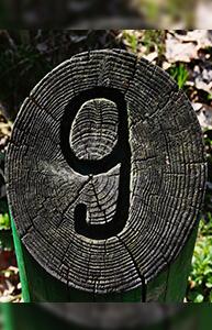9 – devet – number nine in Serbian