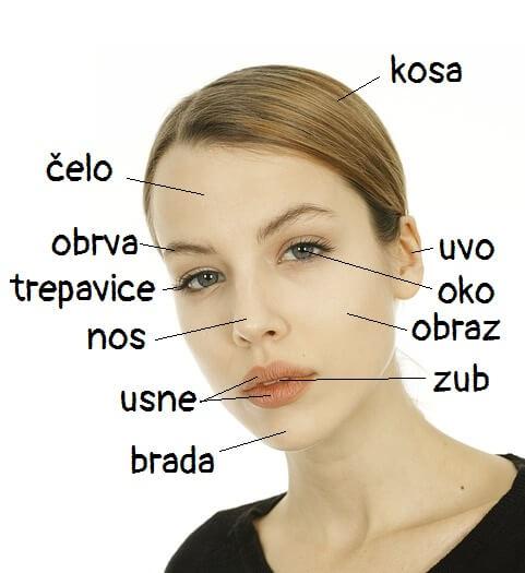 Telo (body) 1