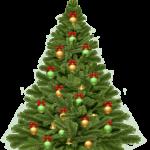 Božić (Christmas) 17