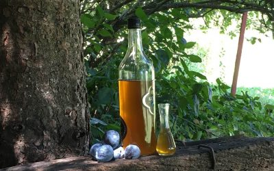 The Magnificent Slivovitz – plum brandy